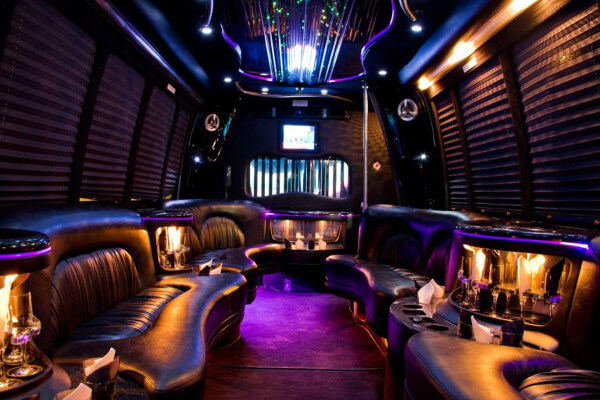 15-person-party-bus-rental-pittsburgh